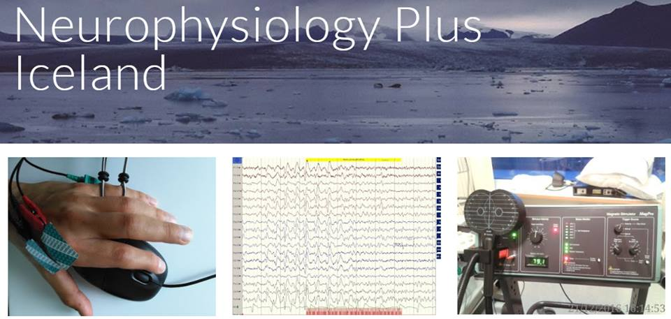 Neurophysiology Plus website