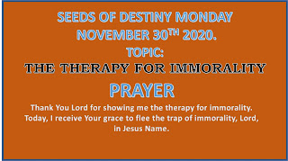 The Therapy For Immorality - SOD 30 November 2020