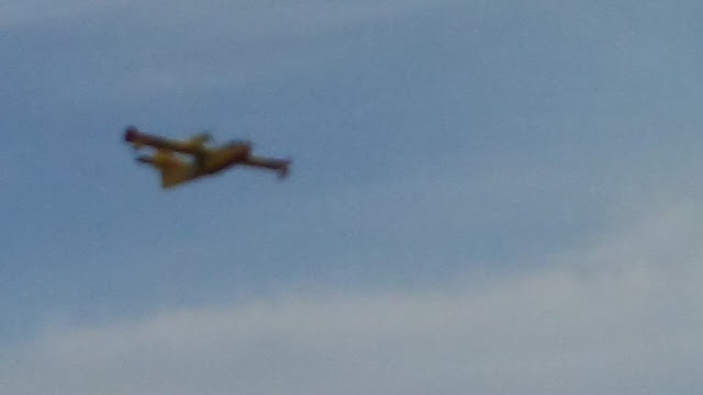 Another water bomber plane