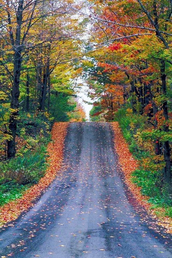 Estradas | Roads