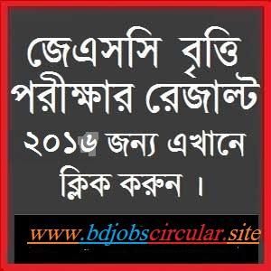 JSC Scholarship Result 2016- JSC Result 2016 || www.educationboardresults.gov.bd