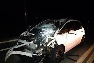 Motorista fica ferido após colidir carro em cavalo em rodovia da PB
