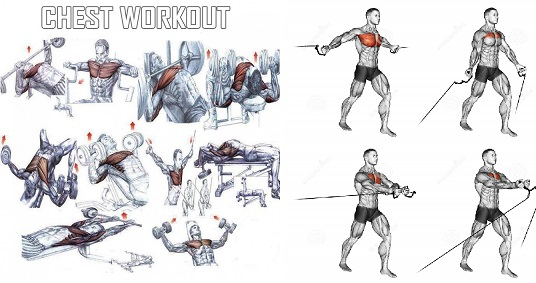 Chest Exercises For Building Muscle