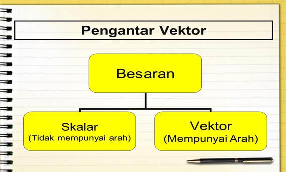 Besaran Vektor dan Besaran Skalar : Pengertian, Contoh, dan Perbedaan