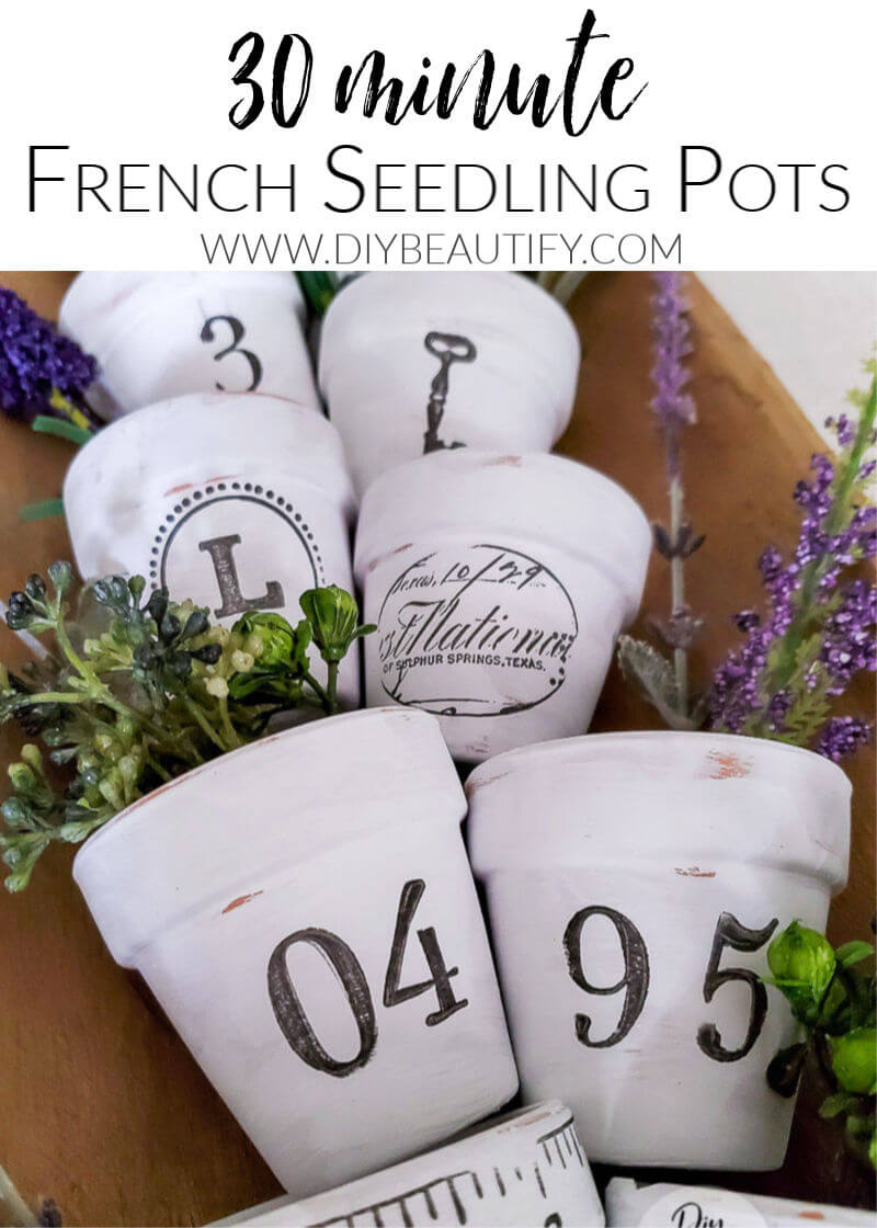 painted pots with lavender