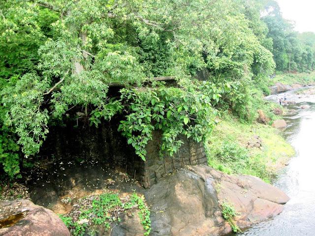 Kanyakumari Wildlife
