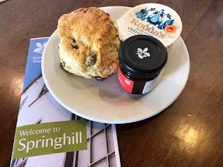Springhill scone