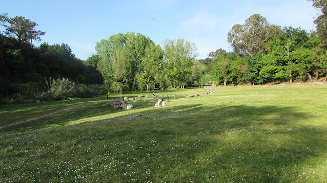 Pessoas sentadas no realvado do Parque Oriental do Porto