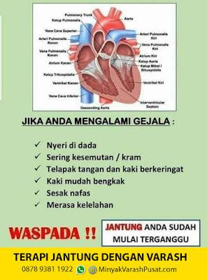 Terapi Jantung dengan Minyak Varash