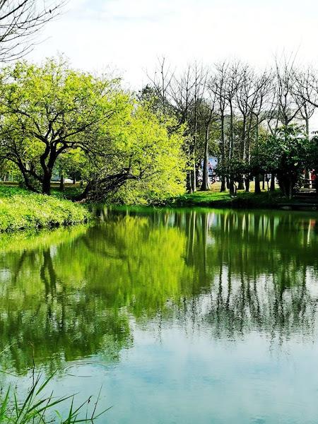 明道大學校園唯美浪漫爆表 彰化走春拍照熱門景點