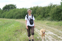 Walking with my dog on a campsite