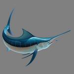 swordfish in spanish