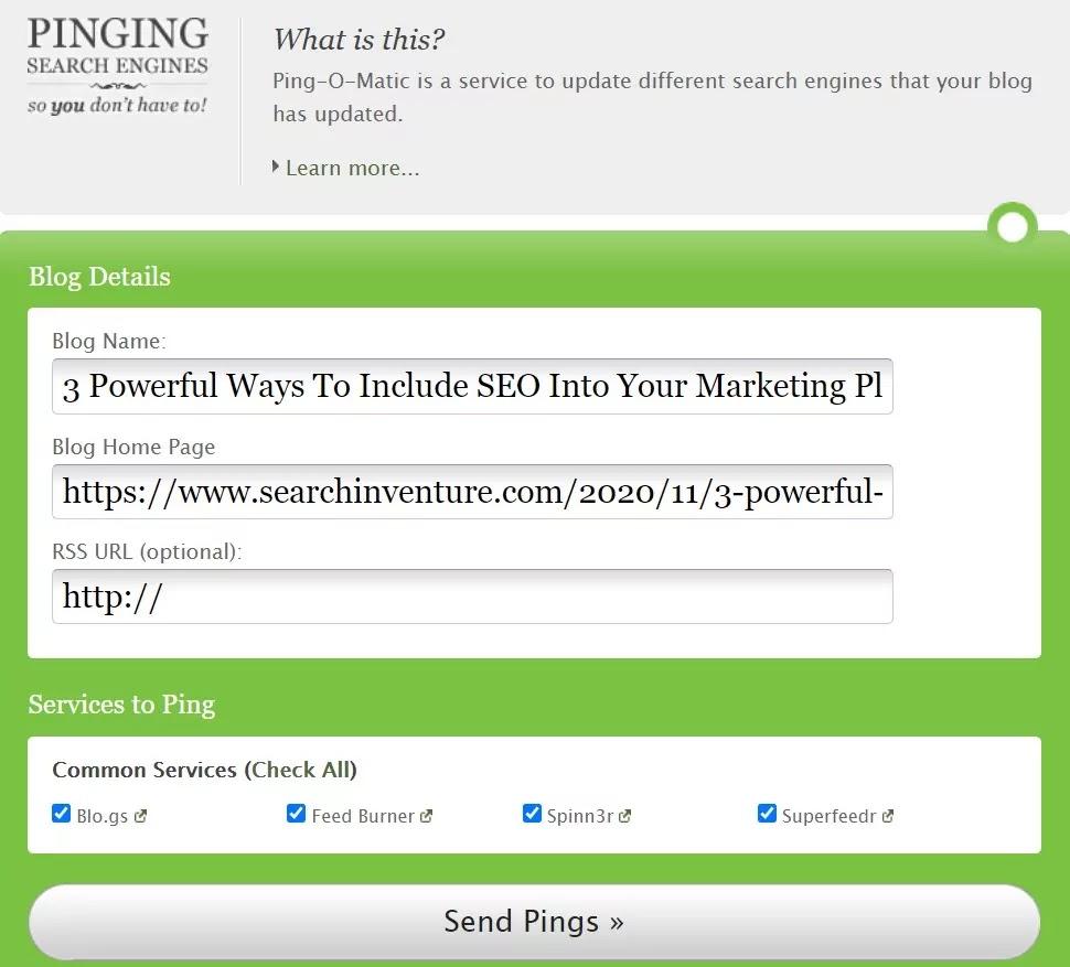 ping website