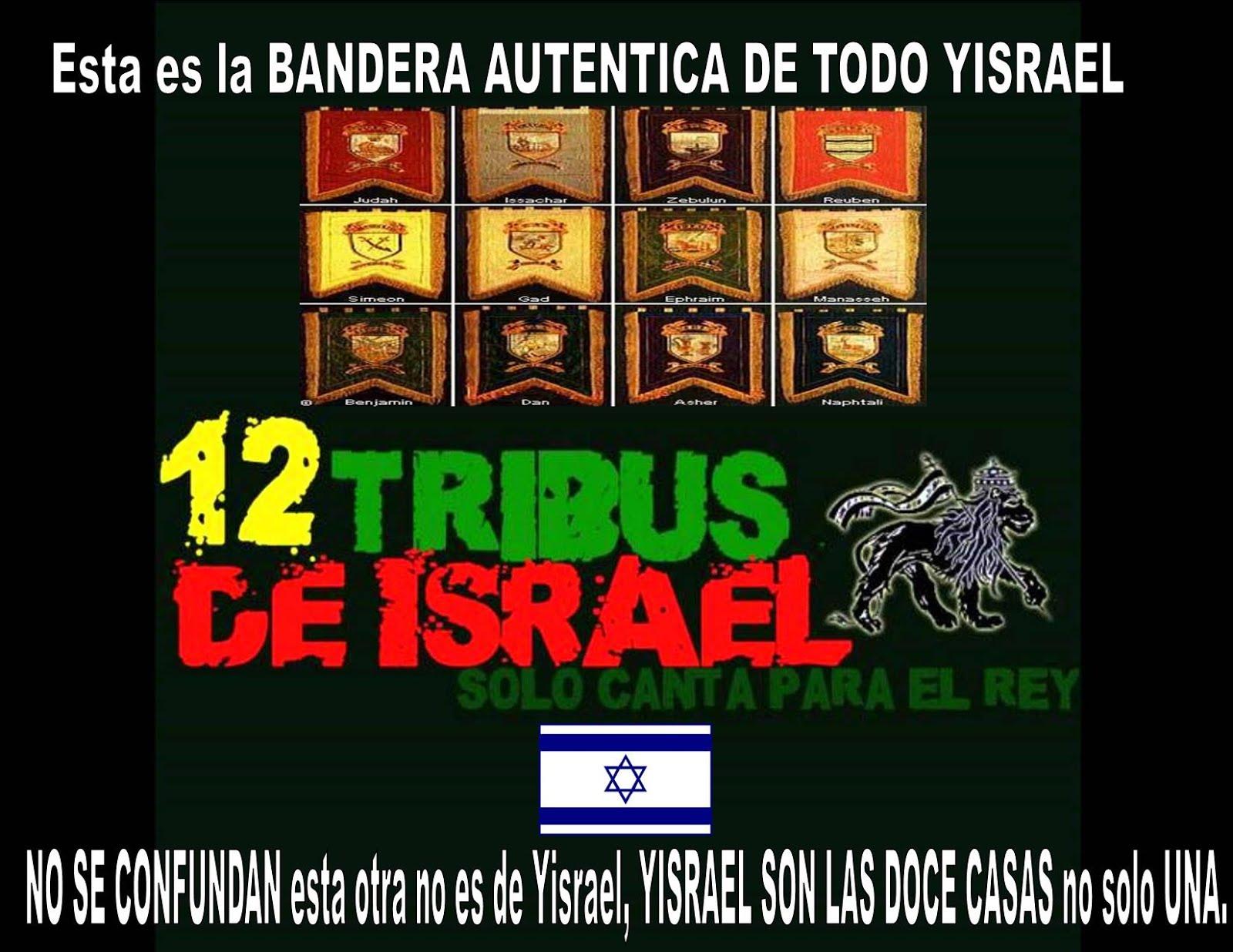 LAS BANDERAS DE TODO YISRAEL