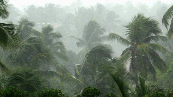 Thiruvananthapuram, News, Kerala, Rain, Alerts, Heavy rain in Kerala on coming days: Weather report