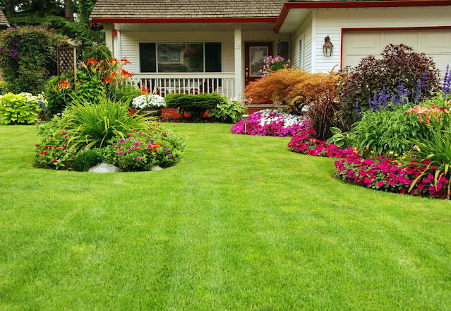backyard landscaping ideas mountains of plants