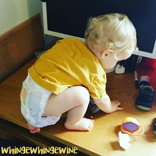 The small one crouching on a desk