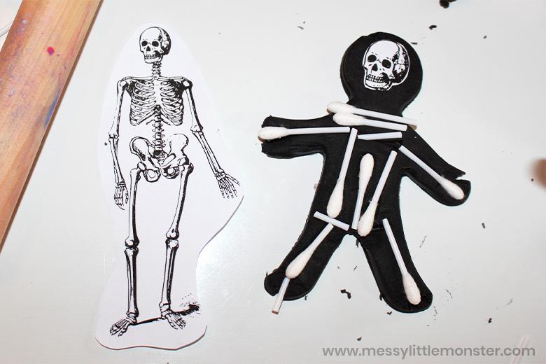 Human skeleton activity for kids