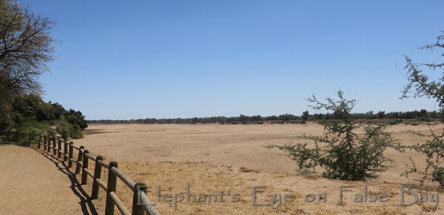 Limpopo River was absolutely dry in September