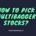 How to pick Multibagger Stocks