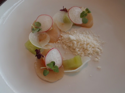 Orkney Islands Scallop Ceviche