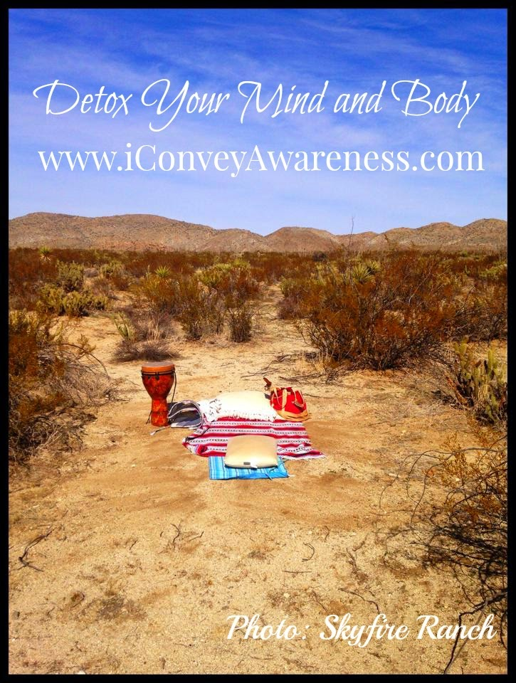 Detox Your Mind and Body - Earthing with Skyfire Ranch