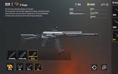 Những khẩu shotgun đều rất chiếm và độ chum đạn thấp nên độ chính xác không cao