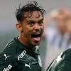 www.seuguara.com.br/Gustavo Scarpa/Palmeiras/Copa Libertadores 2020/
