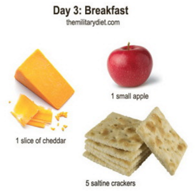 menu diet militer