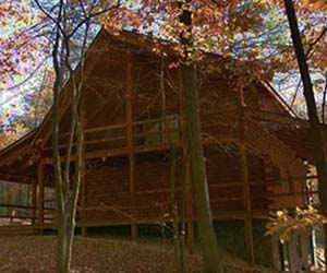 cabin with fall leaves surrounding double deck