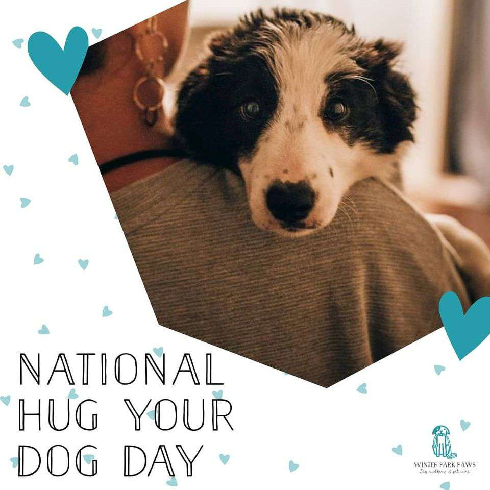 National Hug Your Dog Day Wishes Lovely Pics