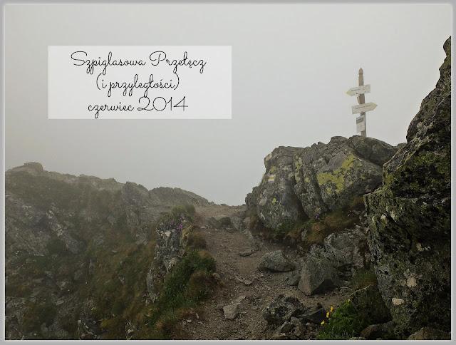 https://www.rudazwyboru.pl/2014/06/czasem-sonce-gownie-deszcz-czyli_21.html