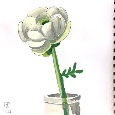 Daily Painting in gouache of a ranunculus in glass vase - by Amy Lamp