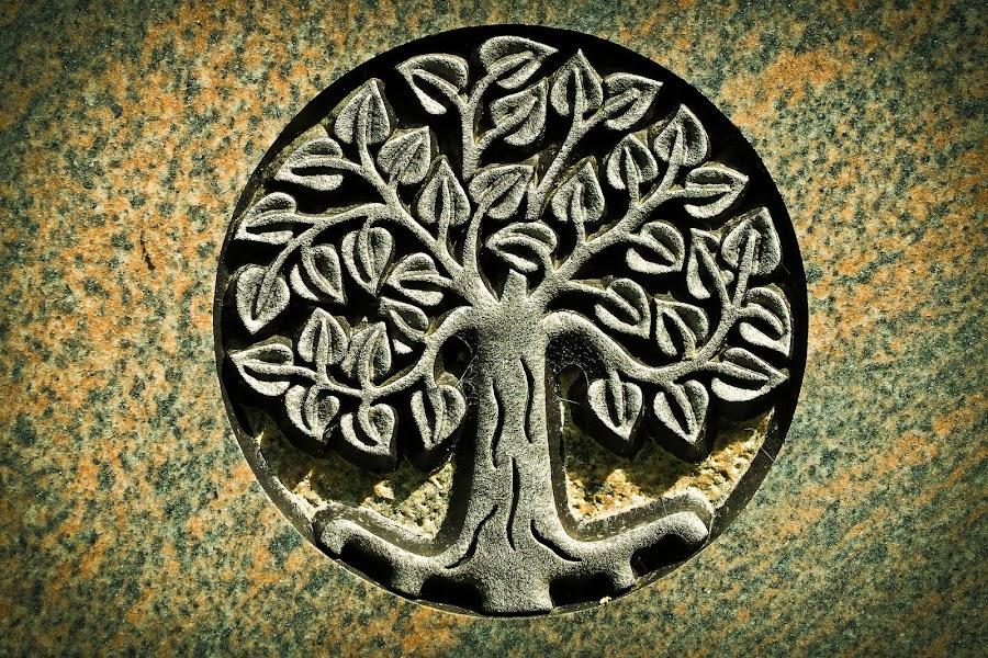 Grabado del árbol de la vida