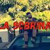 """Cris Mejía Presenta el Video Oficial del tema 🤑 """"La Sobrina"""" 👀😁"""