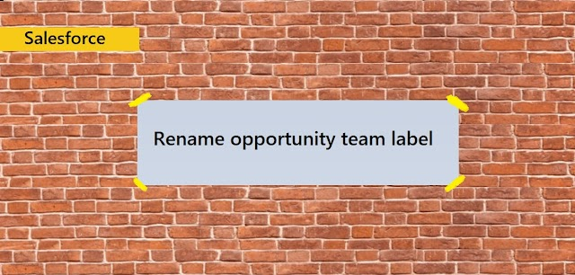 How to rename opportunity team in salesforce lightning