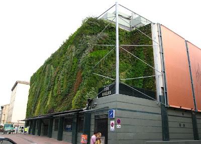 Jasa Pembuatan Vertical garden green wall