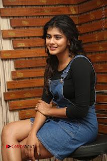 Actress Hebah Patel Stills at Nanna Nenu Naa Boyfriends Movie Interview  0053.JPG