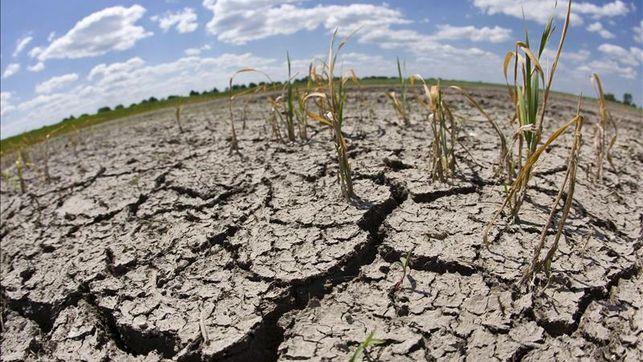 La Aridez Avanza Desertificación