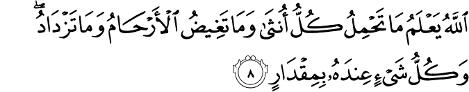 Surat Ar Ra'd Ayat 8