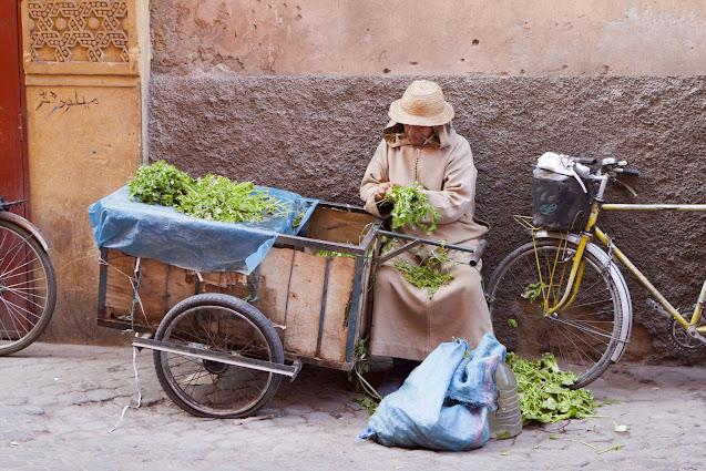Venditore ambulante-Marrakech