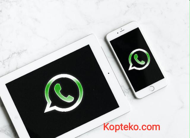 Cara Memindahkan Whatsapp dari Android ke iPhone