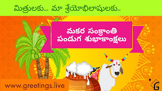 Makara Sankranti Festival Wishes in Telugu Language