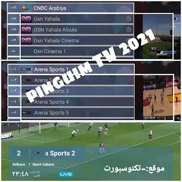 تطبيق Pinguim tv مفعل