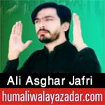 https://aliwalayazadar.blogspot.com/2020/08/ali-asghar-jafri-nohay-2021.html