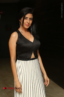 Actress Pragya Stills Beautiful Long Dress at RGV Shiva to Vangaveeti Event  0005.JPG