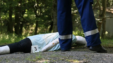 Megölte anyósát egy székesfehérvári férfi