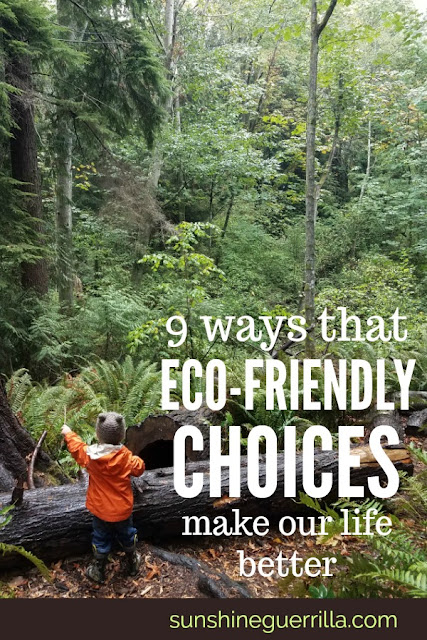Nine Ways that Our Eco-Friendly Choices Have Made our Family Life Better