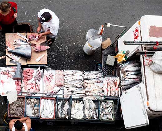 """¡TODO UN LUJO! Precios del pescado prometen hacerte """"pecar"""" en Semana Santa"""