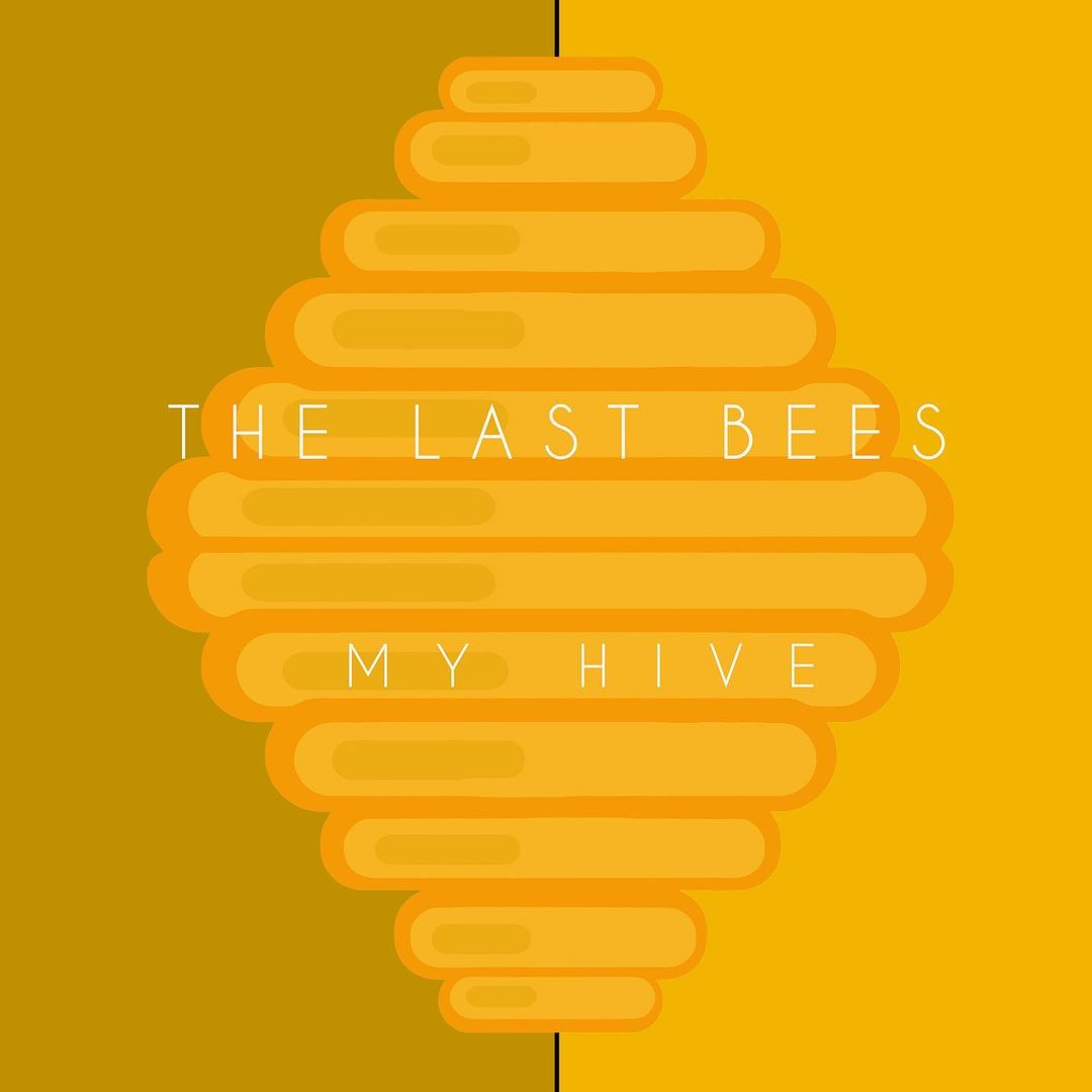"CD cover artwork image for The Last Bees' forthcoming album, ""My Hive"""